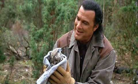seagal plays william lansing his exact job description is unclear in out of reach but he lives alone on a wildlife preserve where he is seen nursing an - Wildlife Biologist Job Description