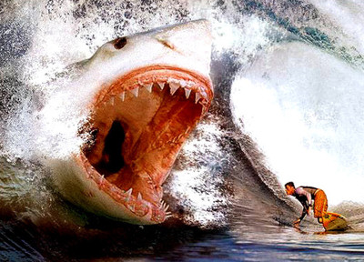 Scary animal attack pictures - photo#43