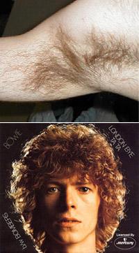 bowie-vs-armpit
