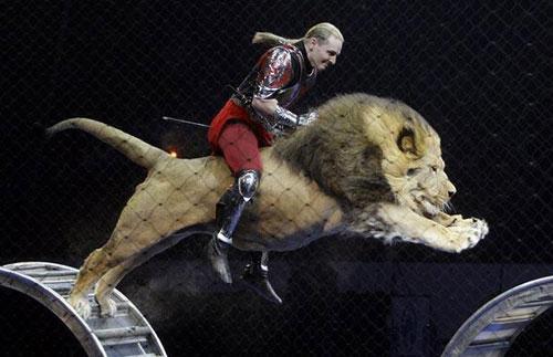 lionjump