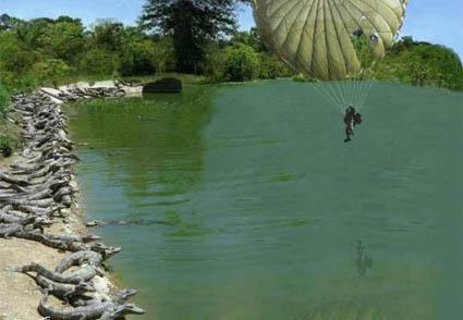 parachute-gators