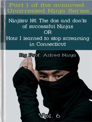 ninja_textbook