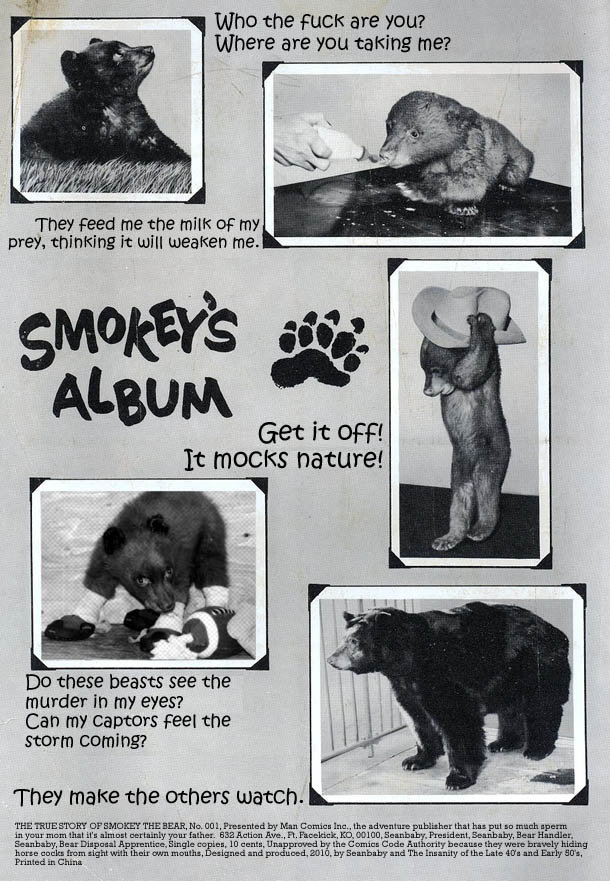 smokey the bear a terrifying origin story comic cracked com