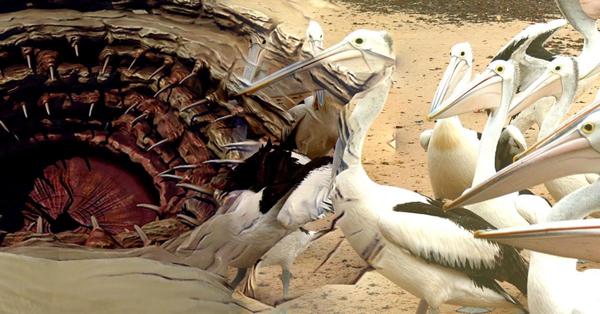 The 6 Most Disturbingly Evil Birds Cracked