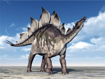 everybody once thought stegosauruses could actually fly cracked com