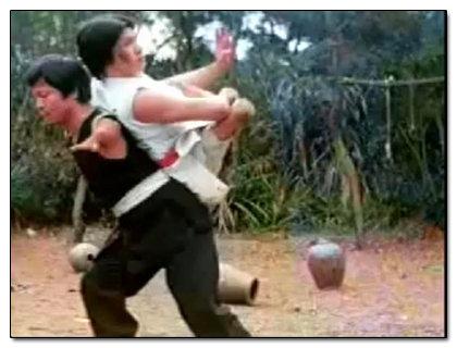 Kung snake fu style fist