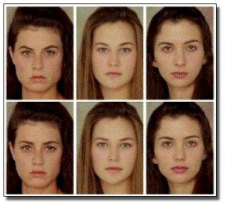 Female pheromones during ovulation