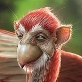 monkeybird Cracked photo