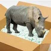 RhinoInABox Cracked photo