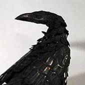 Velvet-Crow Cracked photo