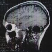 Bonegina Cracked photo