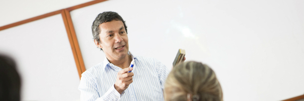 What do college professors do besides teach?