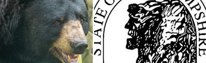 New Hampshire's Libertarian 'Utopia' Got Overrun By Bears