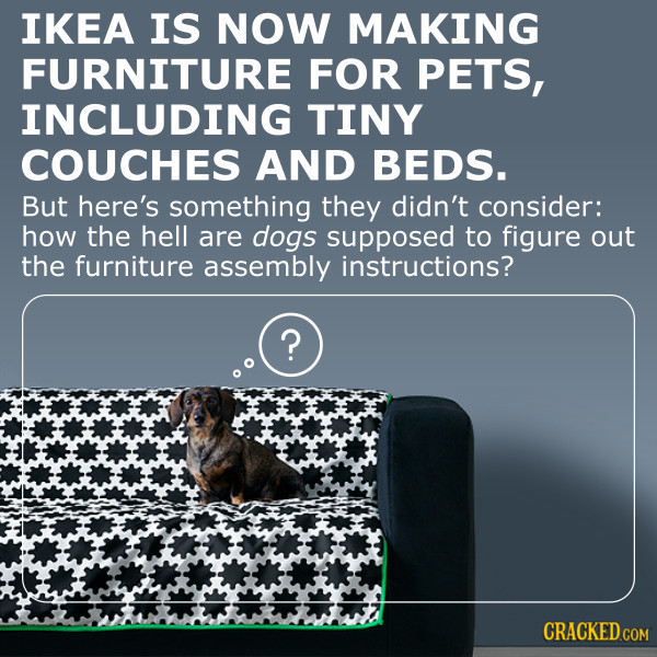 IKEA Is Now Offering Furniture For Pets