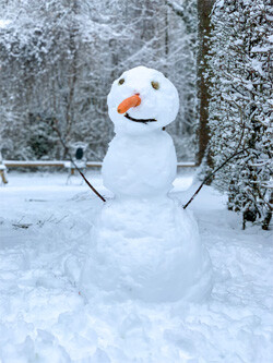 a snowman with a carrot nose
