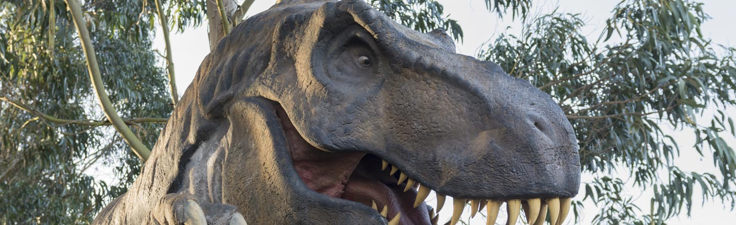 The T-Rex's Mouth Is Even Scarier Than You Thought