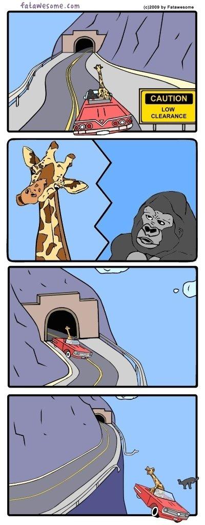 If Zany Animal Adventures Had Realistic Endings