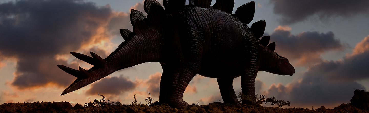Everybody Once Thought Stegosauruses Could Actually Fly