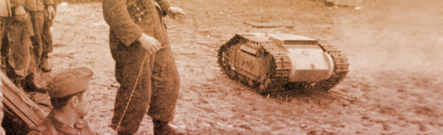 The Weird Nazi Tiny Tanks You Never Learned About In School