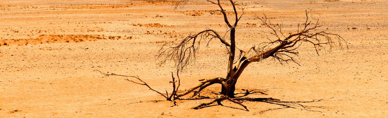7 Huge Apocalypses (That Might Happen In Your Lifetime)