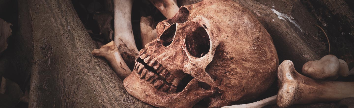 Science Says Your Own Skeleton Is Freaking You Out