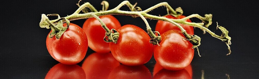A Trip Through The Tomato's Dark Ages (And On To Our Plates)