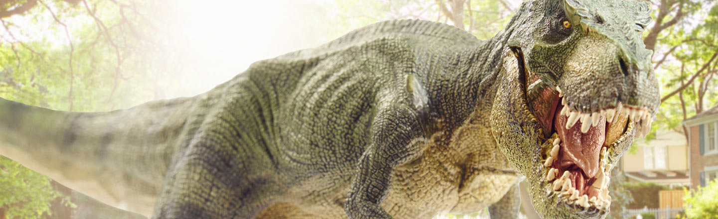 8 Things That Would Inevitably Happen If I Had A Dinosaur