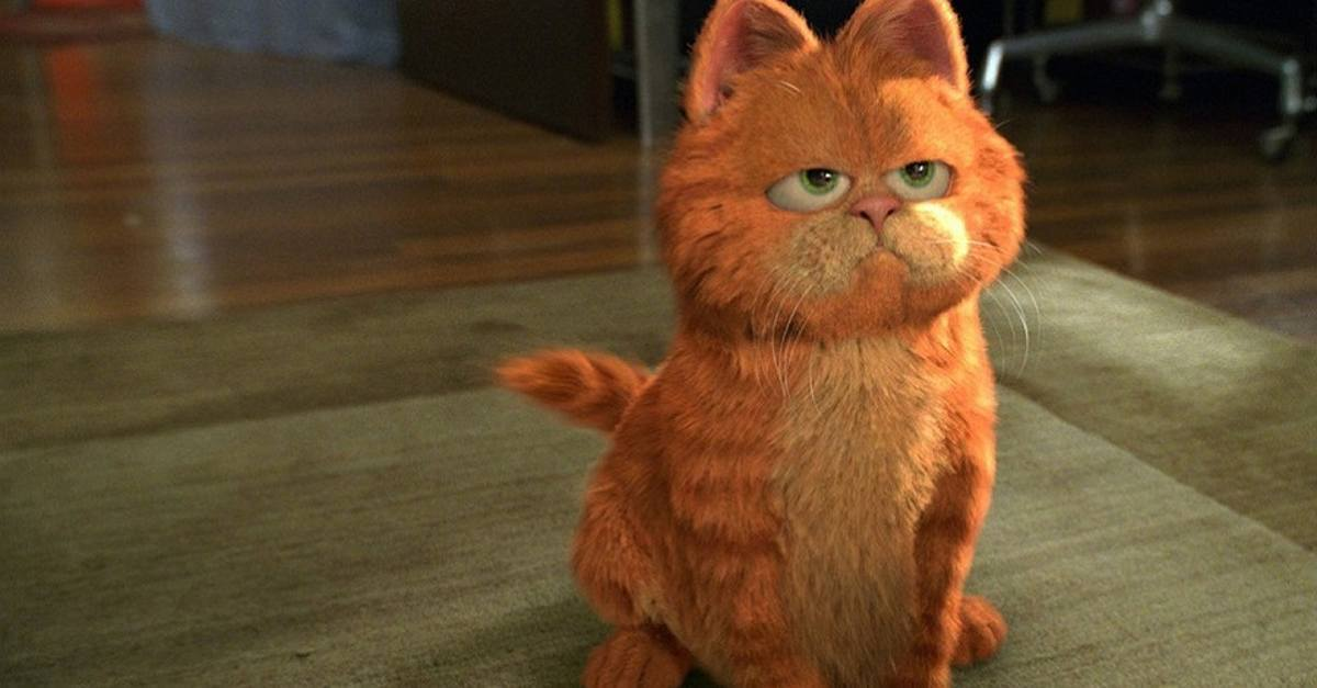 7 Things The Garfield Movie Got Completely Wrong Cracked Com
