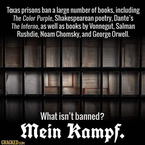 Prisons Ban Shakespearean Love Sonnets But Allow Mein Kampf