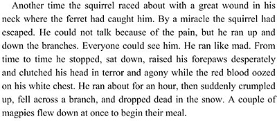 Another time the squirrel raced about with a great wound in his neck where the ferret had caught him. By a miracle the squirrel had escaped. He could