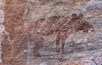 Marvel at this ancient creature, which roamed the Earth 13,000 years ago, and still looks super snuggly.