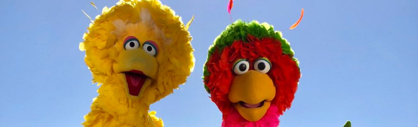 Why Big Bird Looks Different in Different Countries' 'Sesame Street'