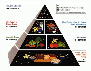 5 'Good' Ideas That Are Secretly Propaganda - the outdated food pyramid