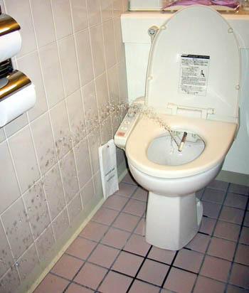 Funny japan japanese lady pee standingup tv urinal weird