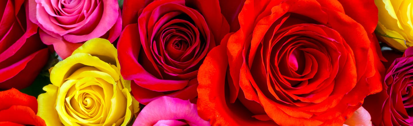 We Won't Tell Your Valentine These Flowers Were Cheap