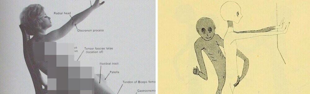 4 Modern Medical Manuals With Insane AF Illustrations