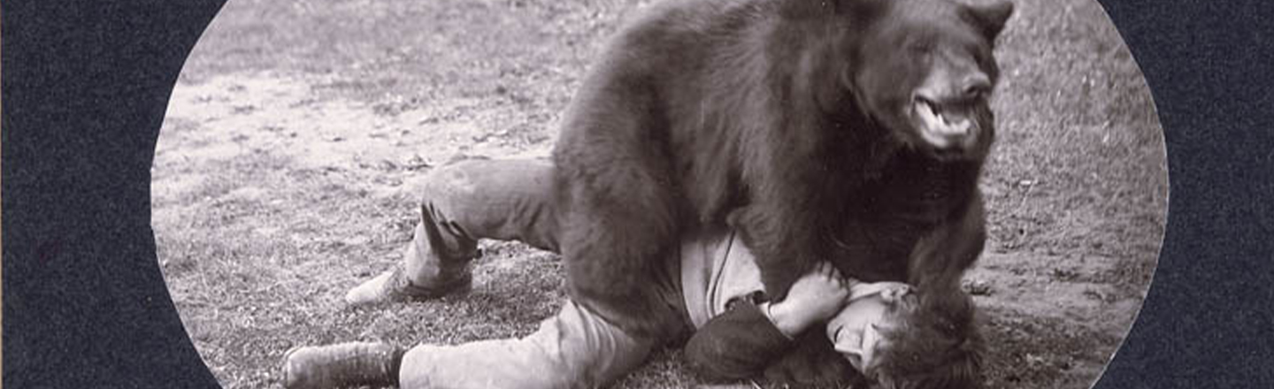 The Audience Could Once Wrestle Bears At Basketball Games