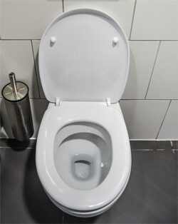 toilet in public restroom