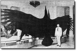 7 (Thankfully) Extinct Giant Versions of Modern Animals