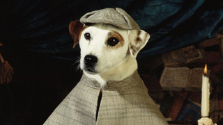 Leave 'Wishbone' Alone, You Hollywood Vultures