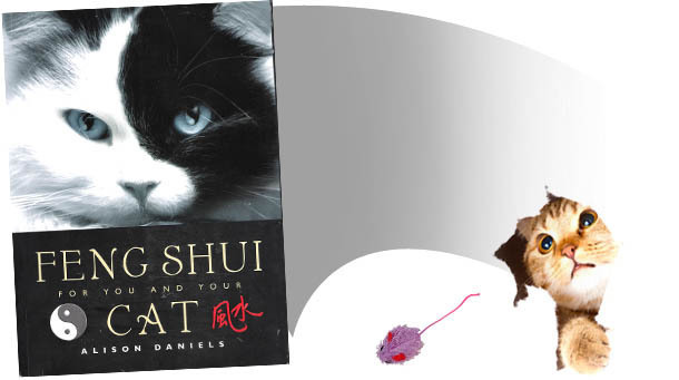 8 Books That Prove Cat Lovers Are Insane