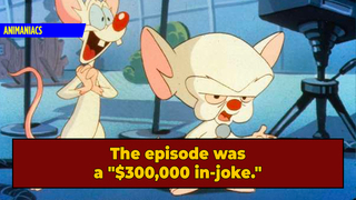 The Deep Cut 'Animaniacs' Joke That Went Over Kids' Heads