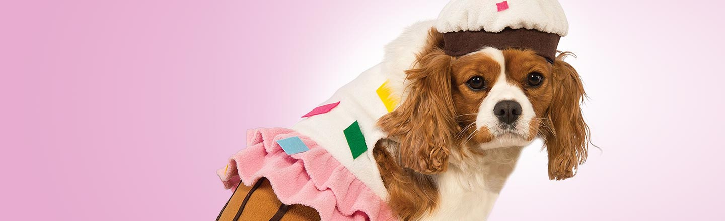 12 Halloween Costumes To Scar Your Pet For Life