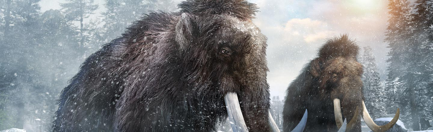 Mammoths Were Sickly Inbred Mutants Who Couldn't Smell