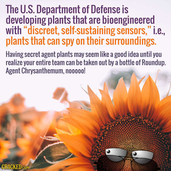 Watch Your Back Mark Wahlberg: DARPA Is Making Spy Plants