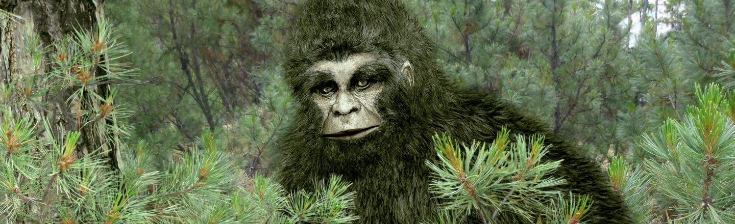 Why There Is Suddenly A Thriving Market For Bigfoot Erotica