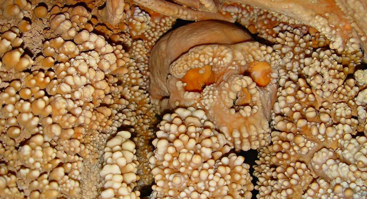 6 Scary Archaeological Finds (That Should've Stayed Hidden)
