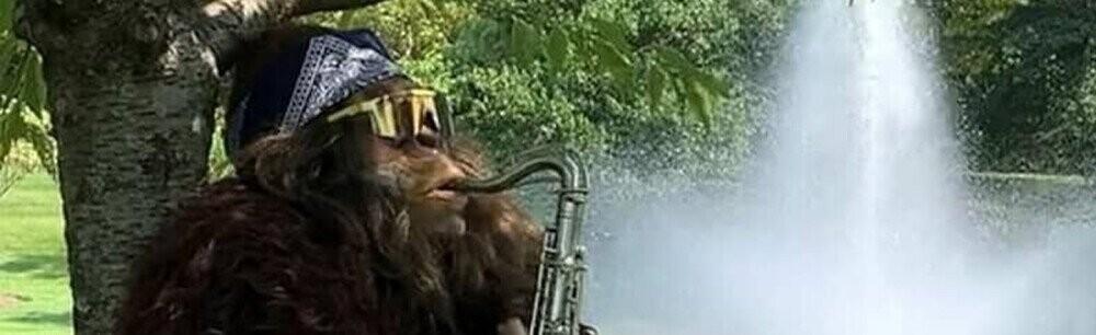 Do You Like Sax Music? Bigfoot Sure Does