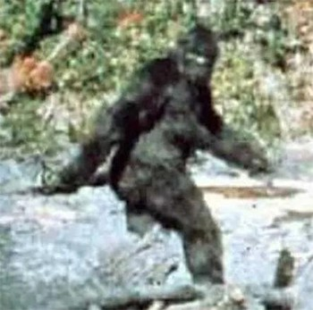 Unknown Creators Of Beloved Pop Culture - The famous Bigfoot photo was rumored to be the work of Hollywood special effects designer John Chambers.