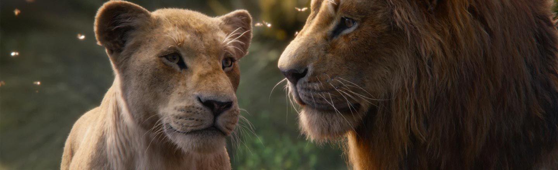 The Gross 'Lion King' Plot The Movie Glosses Over